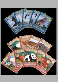 子供向けデザイン実績①絶滅危惧種トレーディングカード制作